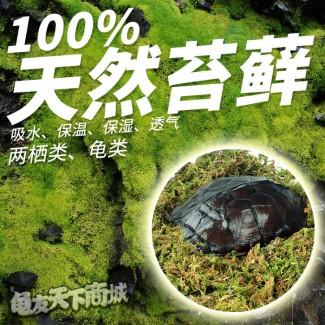 天然苔藓(250g)