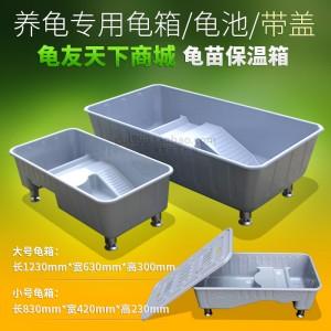 龟缸 龟箱 龟苗保温箱带盖