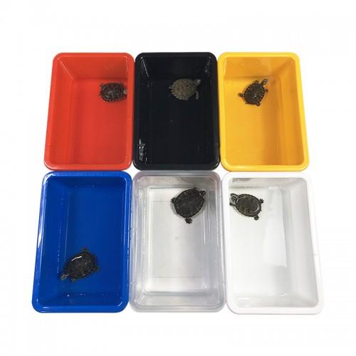 爬宠塑料发色盒 乌龟发色盒 红色黑色黄色蓝色白色透明可选择