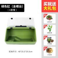 绿色缸A套餐