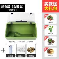 绿色缸B套餐