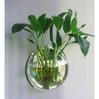 壁挂鱼缸  壁挂花瓶花盆花有机玻璃亚克力创意墙壁金鱼缸一件代发
