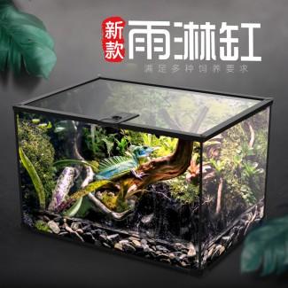 雨林缸造景蕨类植物两栖水陆缸套餐超白雨淋缸热带生态爬宠龟缸灯